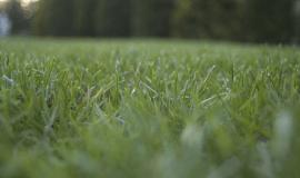 Sekačka na trávu VeGA 46 HWXV - kvalita za fajn cenu